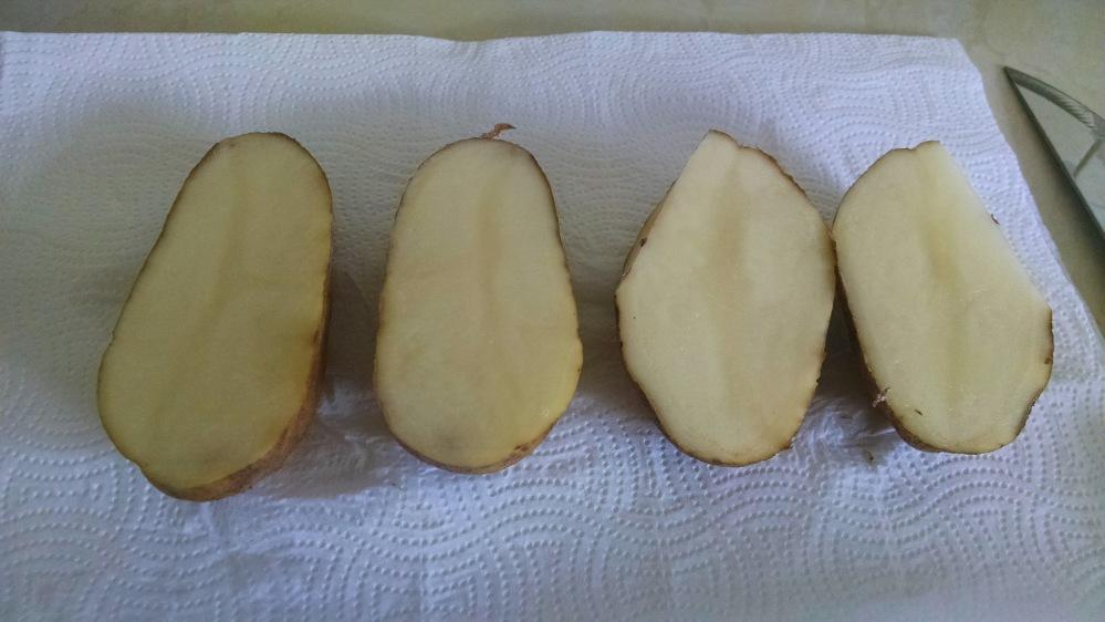 potato skin 1